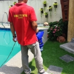 Reliable Pest Control Philippines 4
