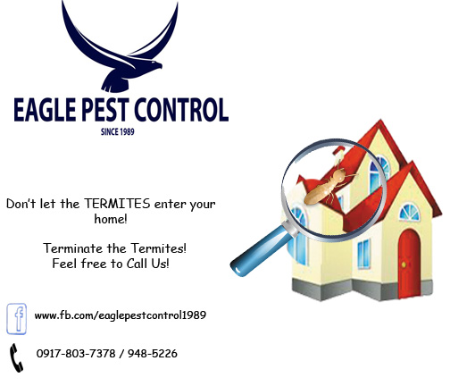 Pest Control In Boutte Mail: Eagle Pest Control (Marikina, Philippines)